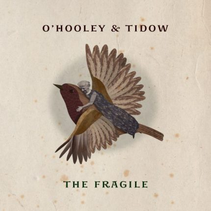 the fragile cd cover